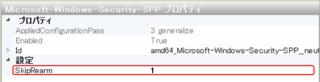 wsim_prop_securityppp.png